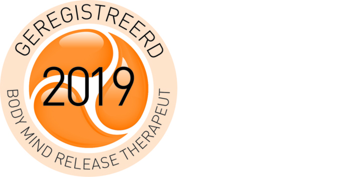 Logo erkend BMR Therapeut